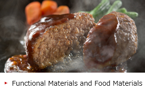 Functional Materials and Food Materials