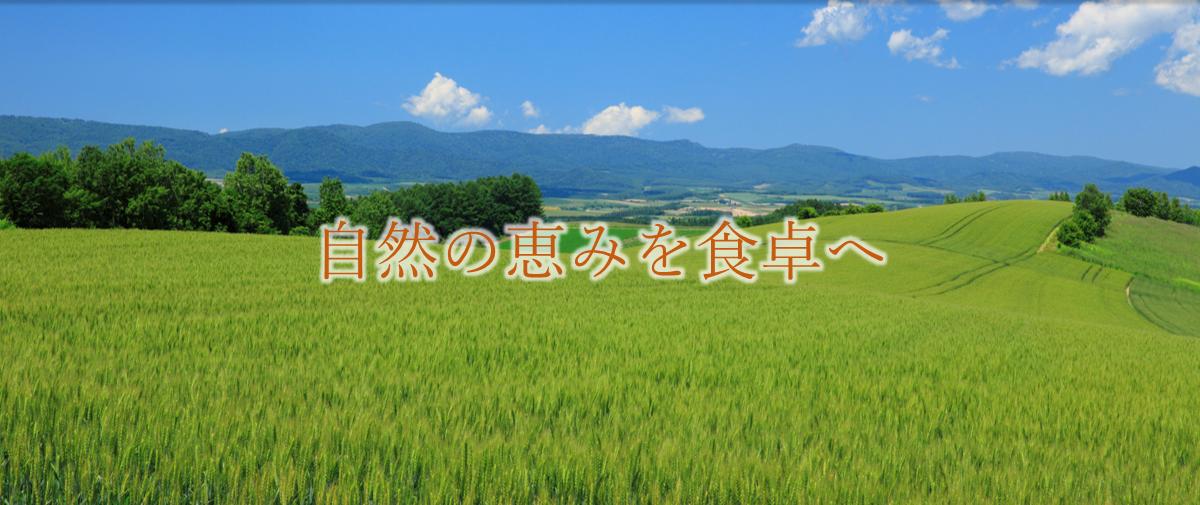 麦畑「自然の恵みを食卓へ」